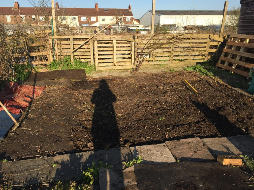 image showing space on the allotment for the bee hives