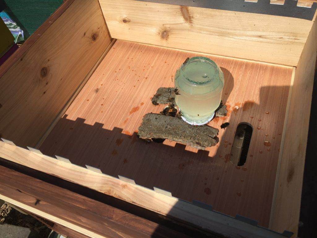 image showing a home made feeder for sugar syrup