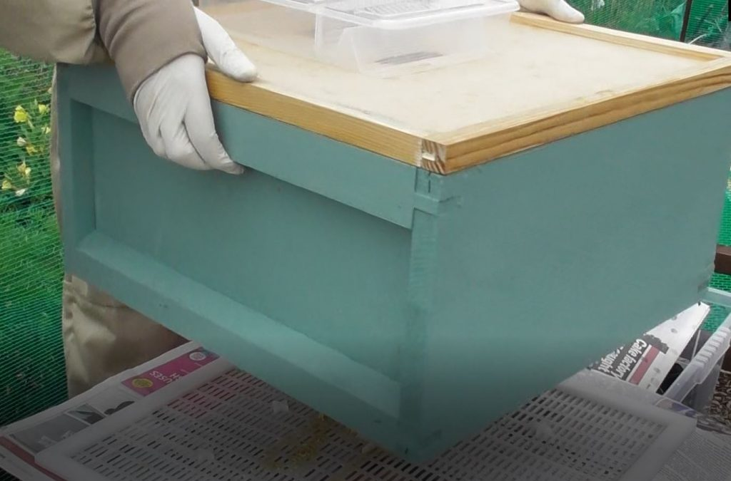 image showing the green brood box being placed on top of the pink brood box
