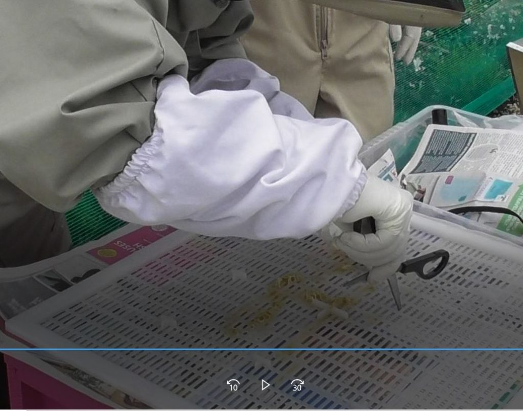 image showing slips being made in the newspaper layer